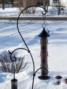 costco weekend sales - bird feeder